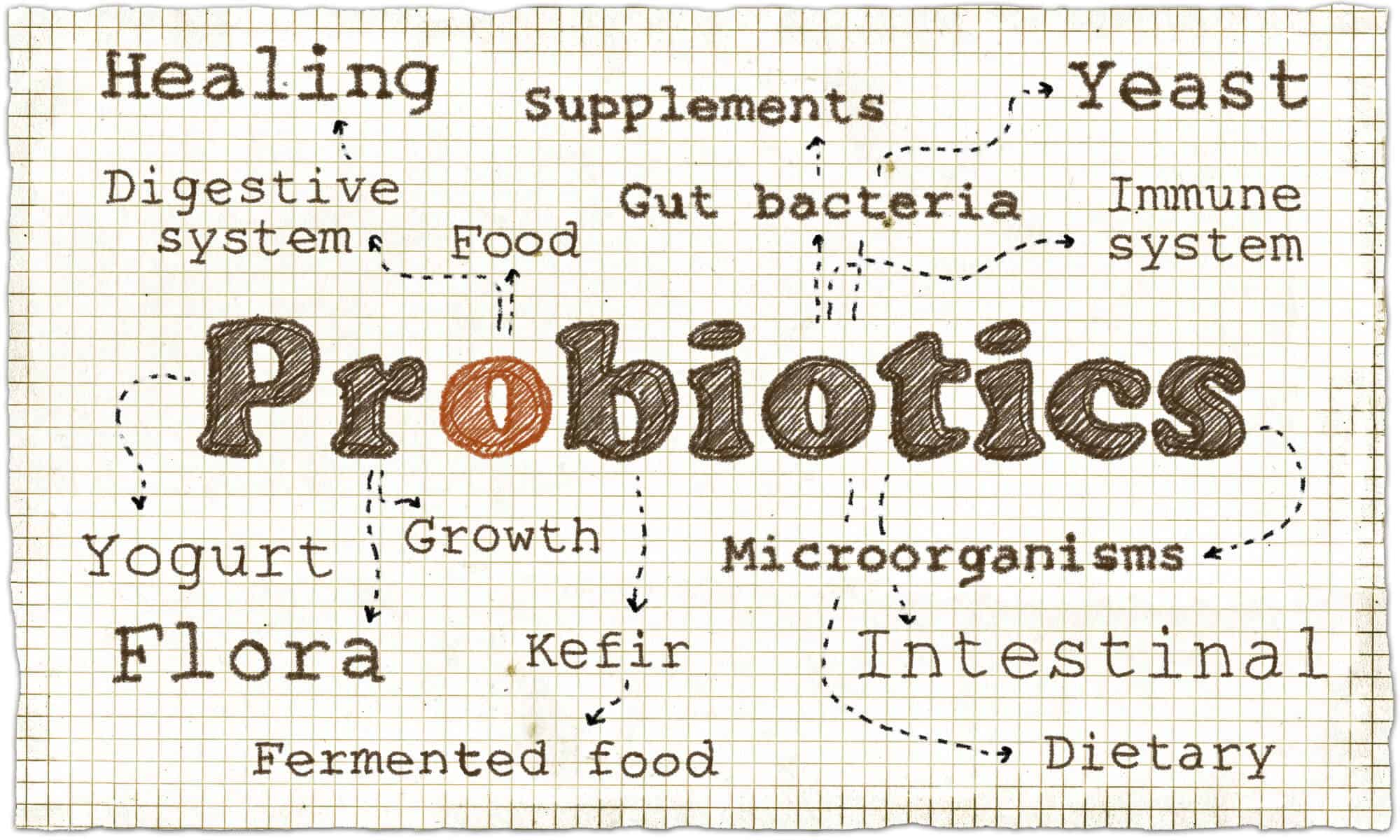 Probiotics illustration