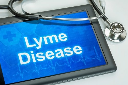 Lime Disease symptoms