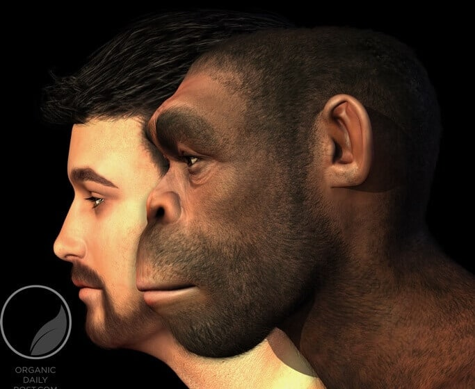 Modern man vs. Caveman