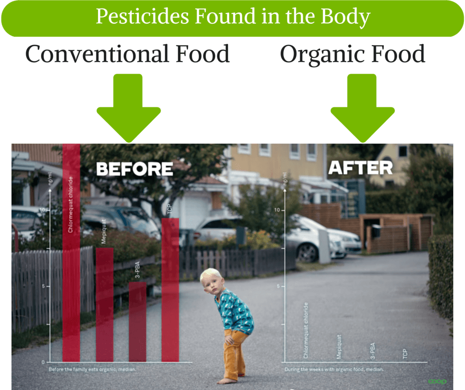 Pesticides in Children from Food