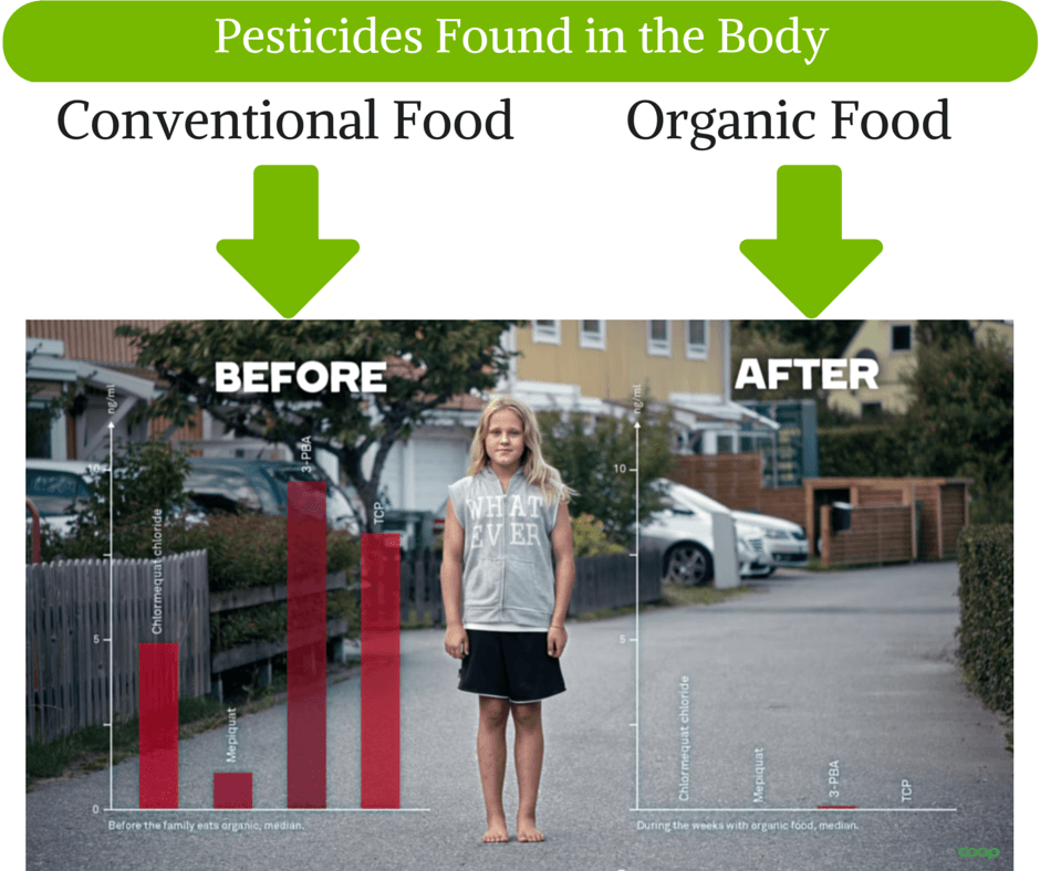 Conventional Food Pesticides in the Body