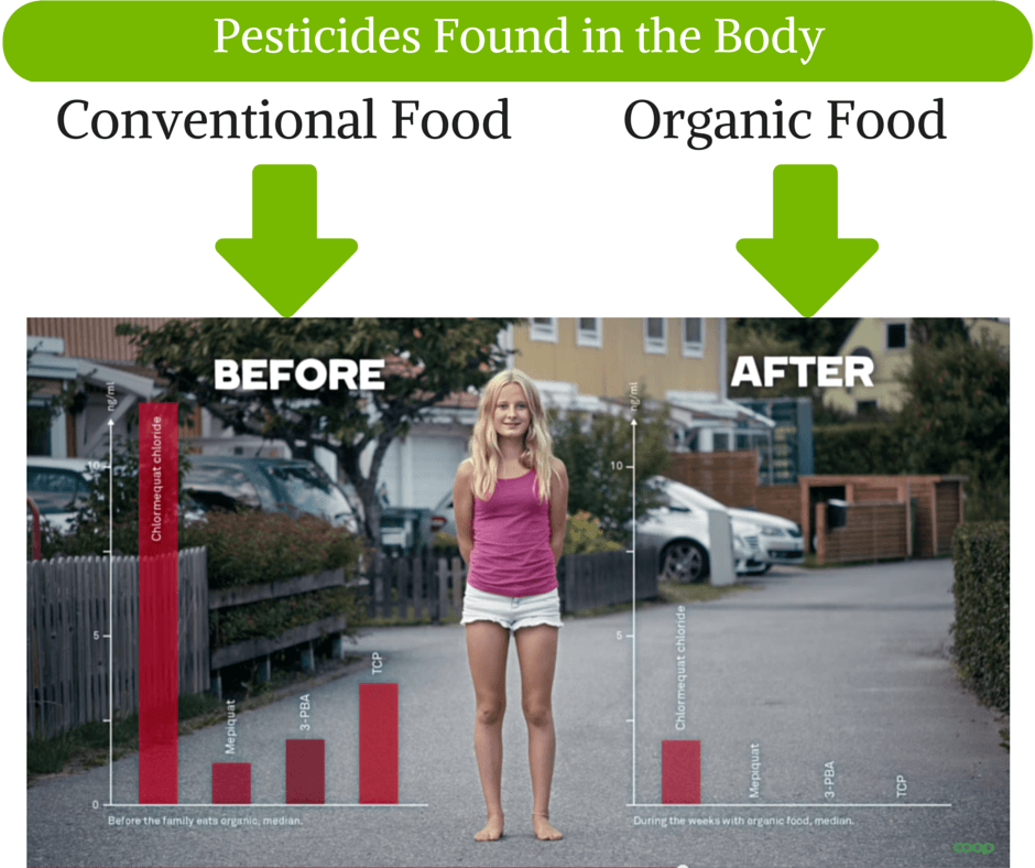 Pesticides in Conventional vs. Organic Food