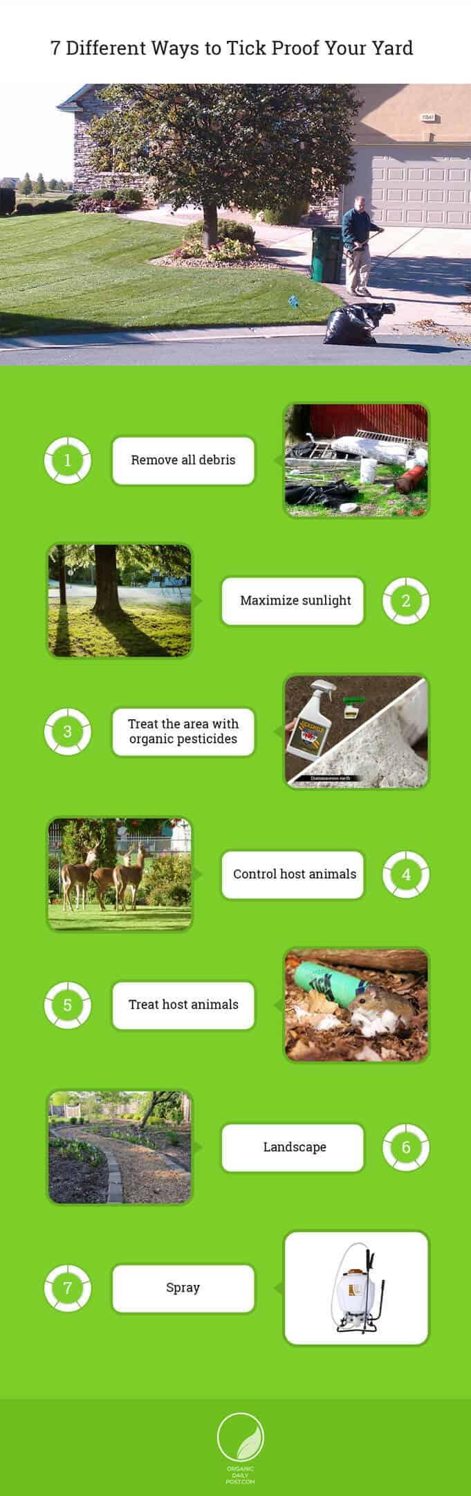 7 ways to kill ticks naturally in your yard