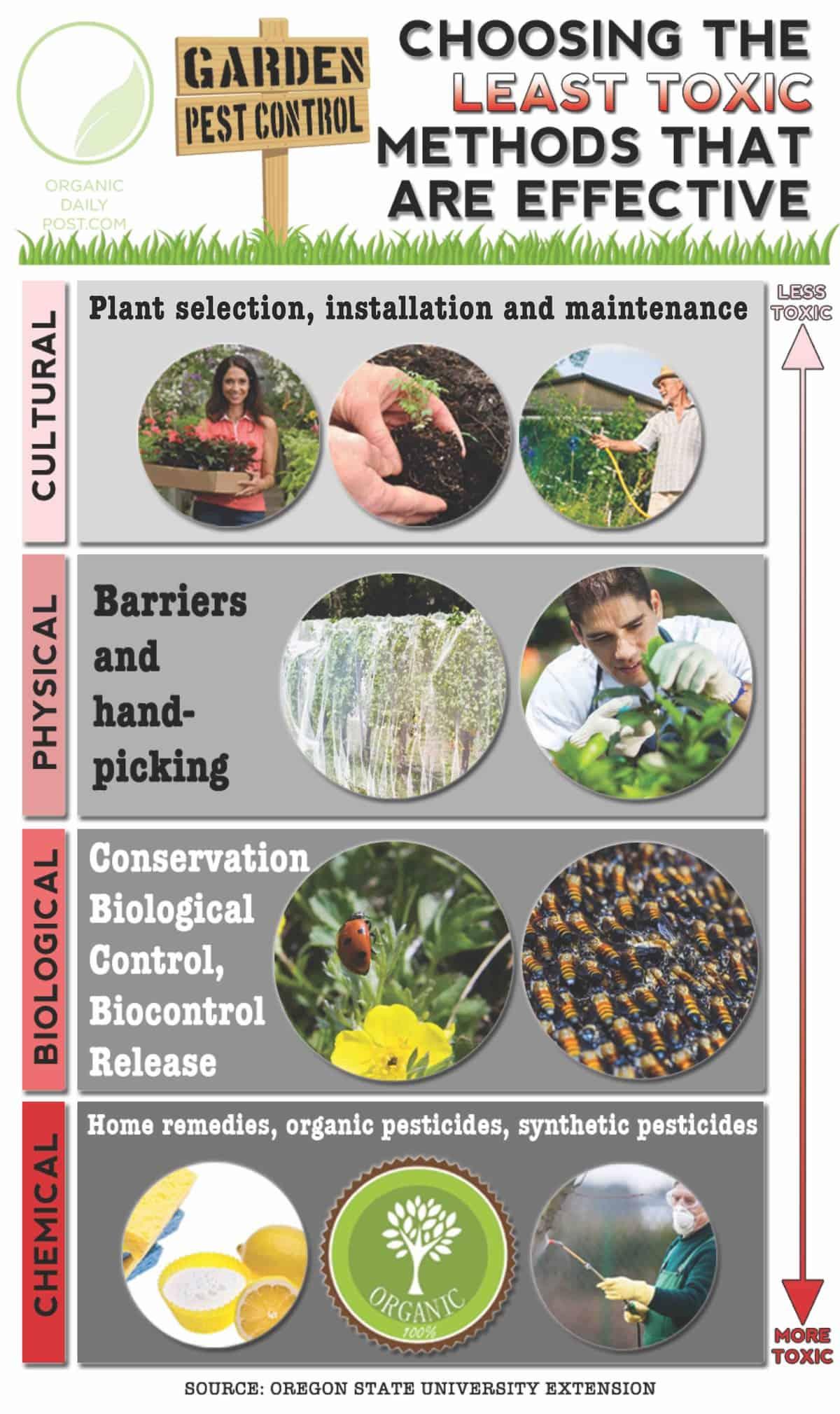 Natural Pest Control Graphic
