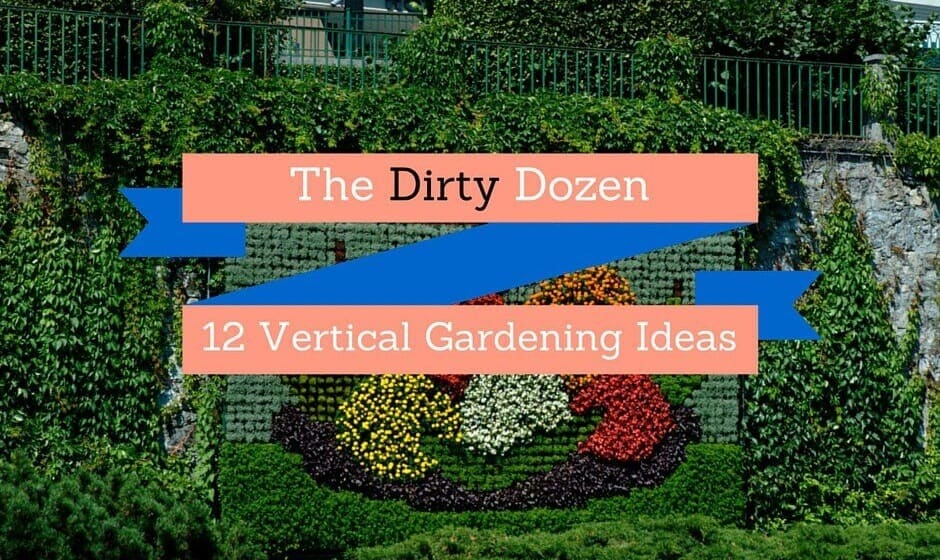 12 Vertical Gardening Ideas for DIY Gardeners