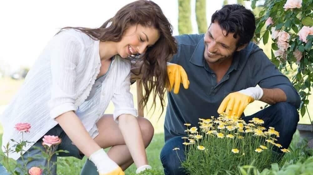 Organic gardening tricks