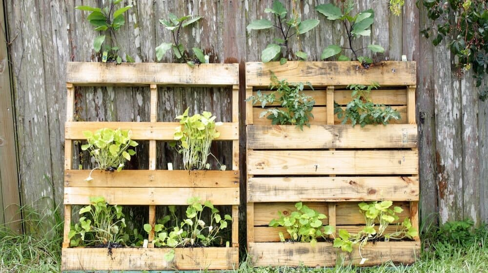 It's Time to Upcycle Your Garden: 20 Innovative Ideas