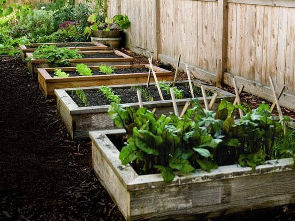 10 Inspiring DIY Raised Garden Beds
