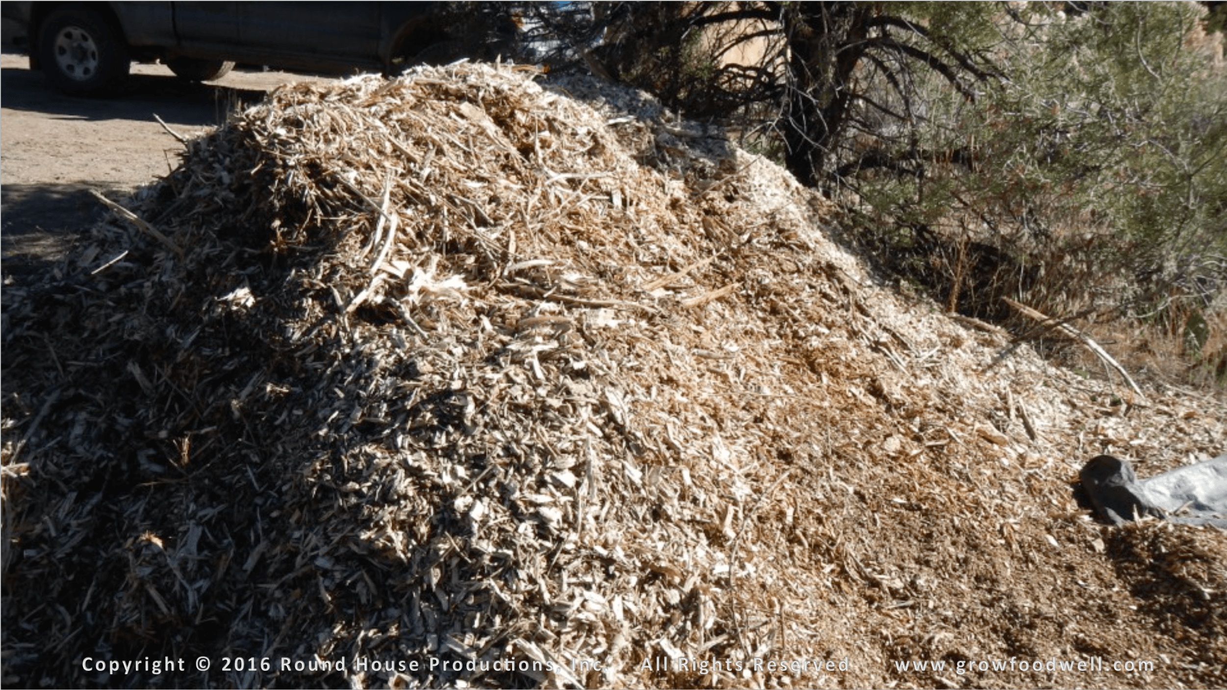 Wood Chip Compost Pile