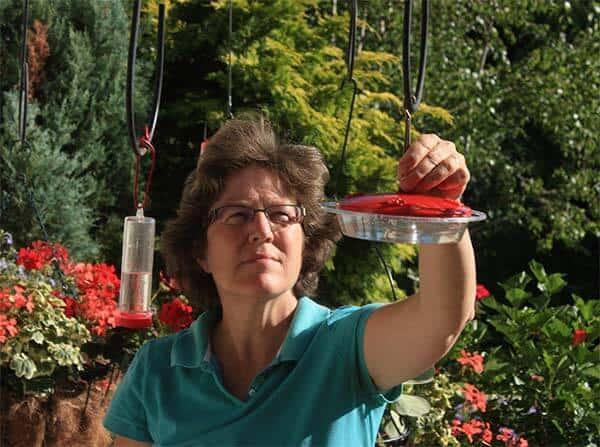 Coevolución de colibríes y flores | ASU - Pregunte a un biólogo