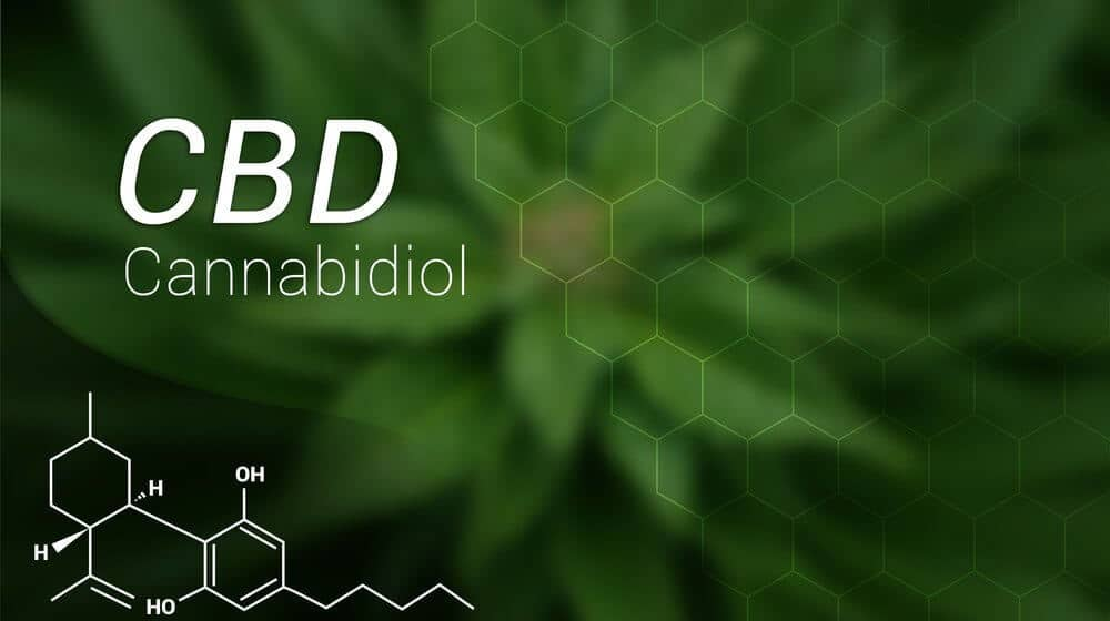 Image result for benefits of cbd oil
