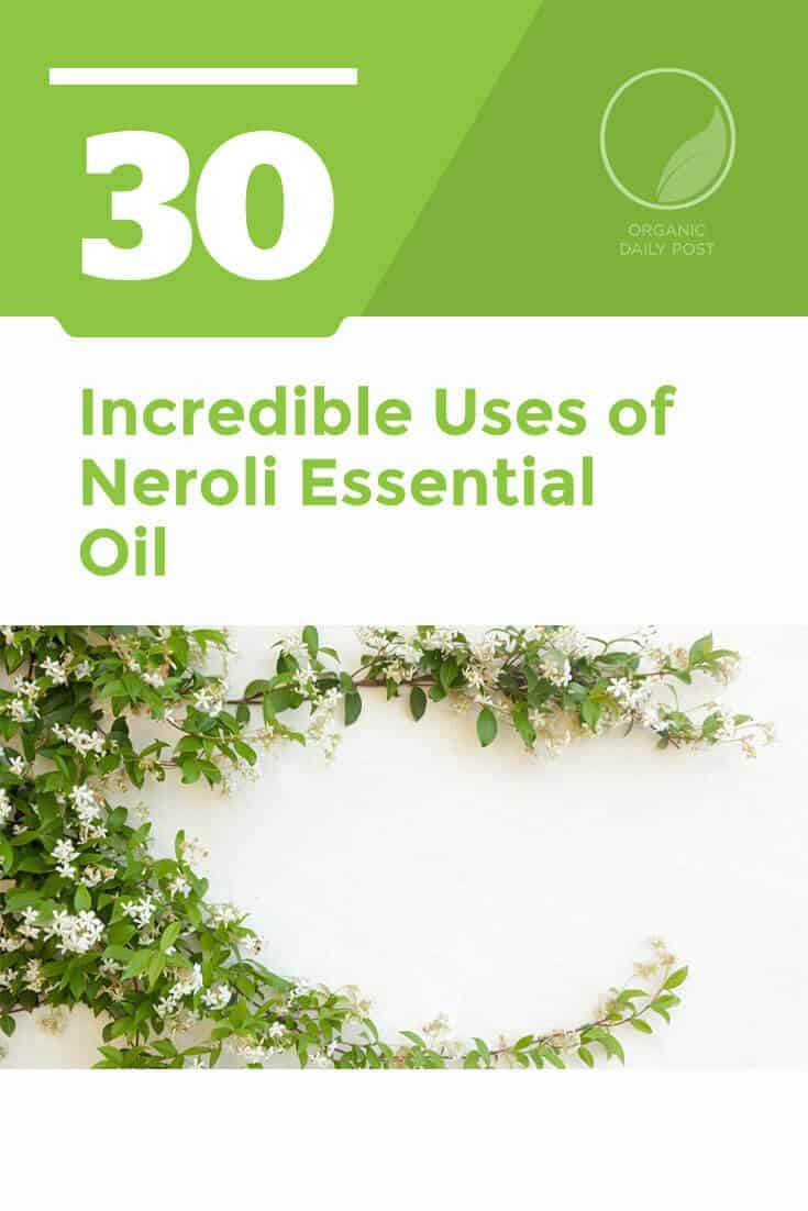 Neroli essential oil relieves inflammation, stress, pain and cramps while it smells absolutely divine. It is a wonderful citrus oil with many incredible uses.