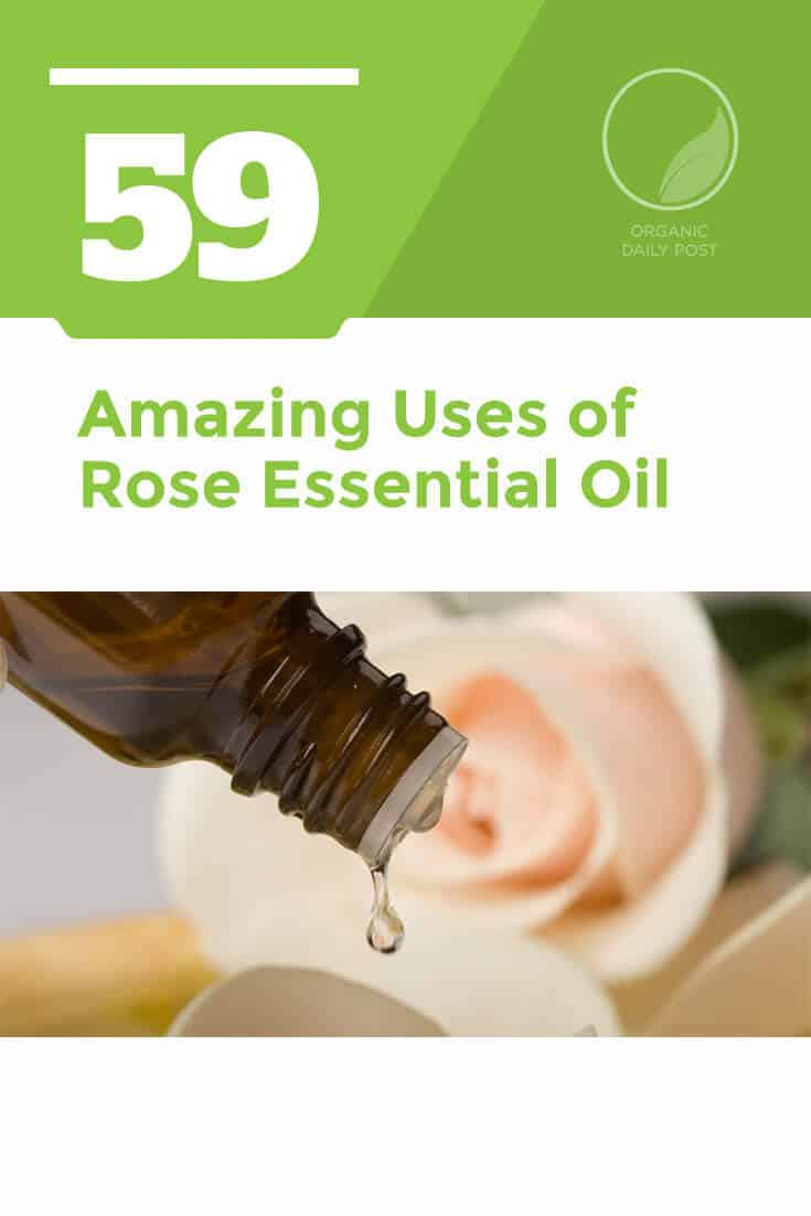 Rose essential oil is used to treat skin disorders, emotional distress, high blood pressure, bacterial infections and much, much more.