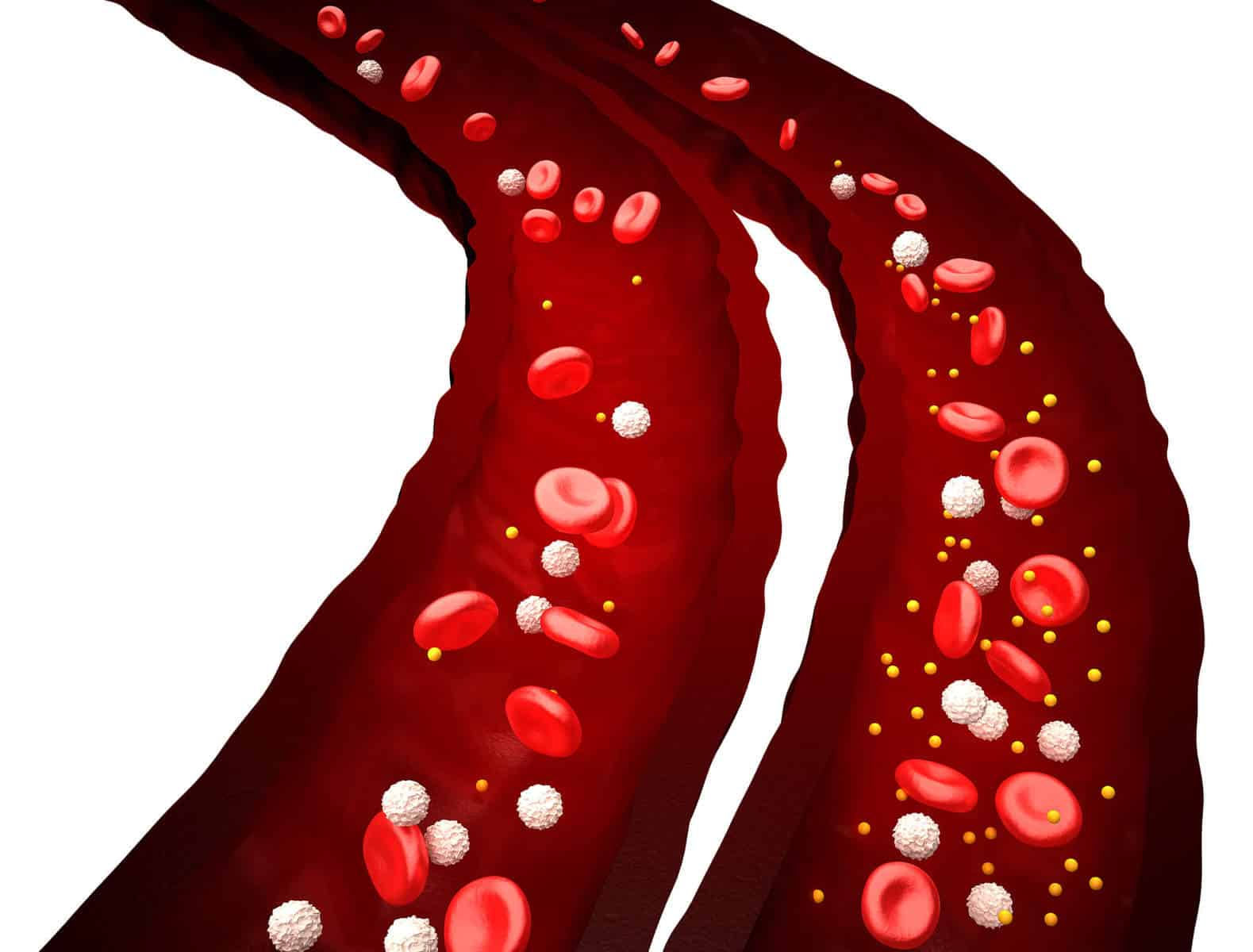 How To Increase Red Blood Cells In Human Body Naturally