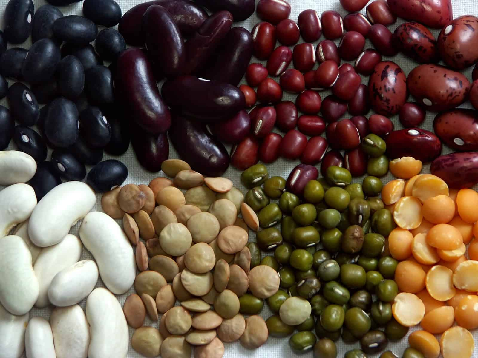 Eight kinds of beans/legumes