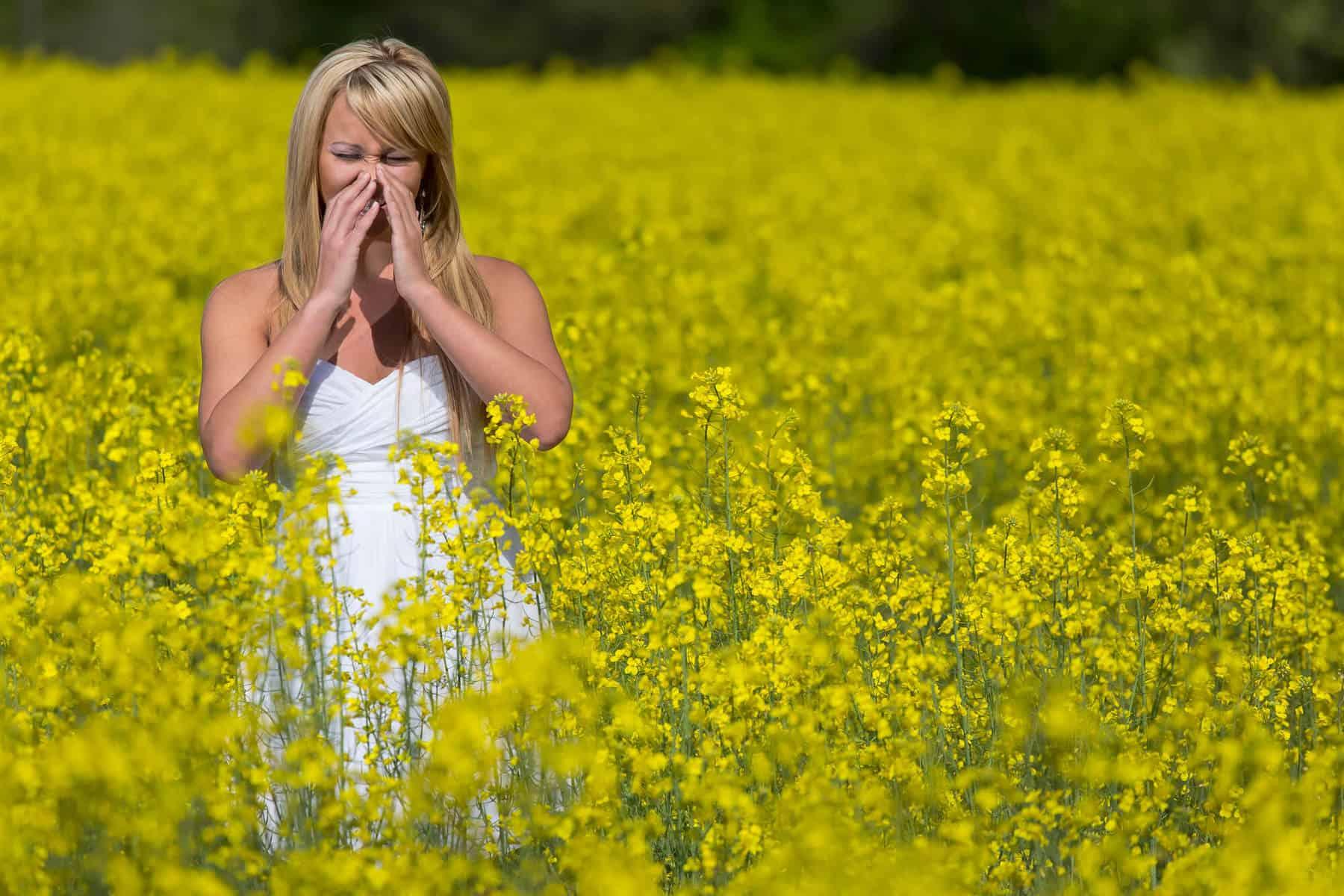 Sinus or allergy relief