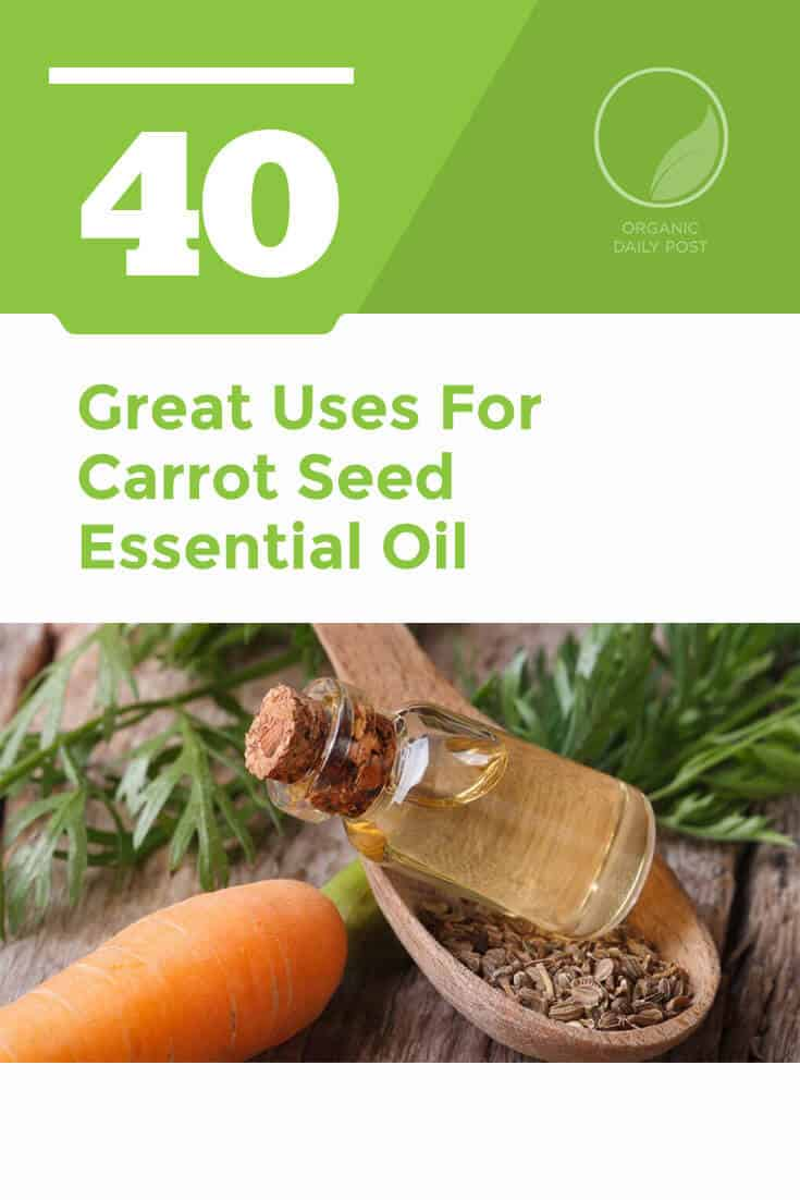 Carrot seed essential oil doesn't have a great fragrance, but it has many therapeutic benefits. Use it to treat bacterial infections, boost your immune system and improve your skin.