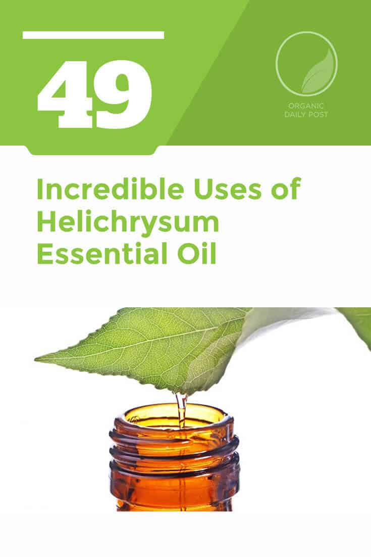 Helichrysum italicum essential oil is used to treat bacterial and yeast infections, anxiety, inflammation and upper respiratory infections.