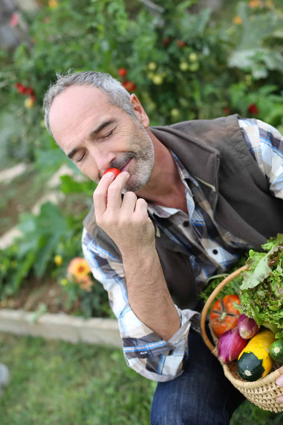 Man in garden smelling vegetable aromas