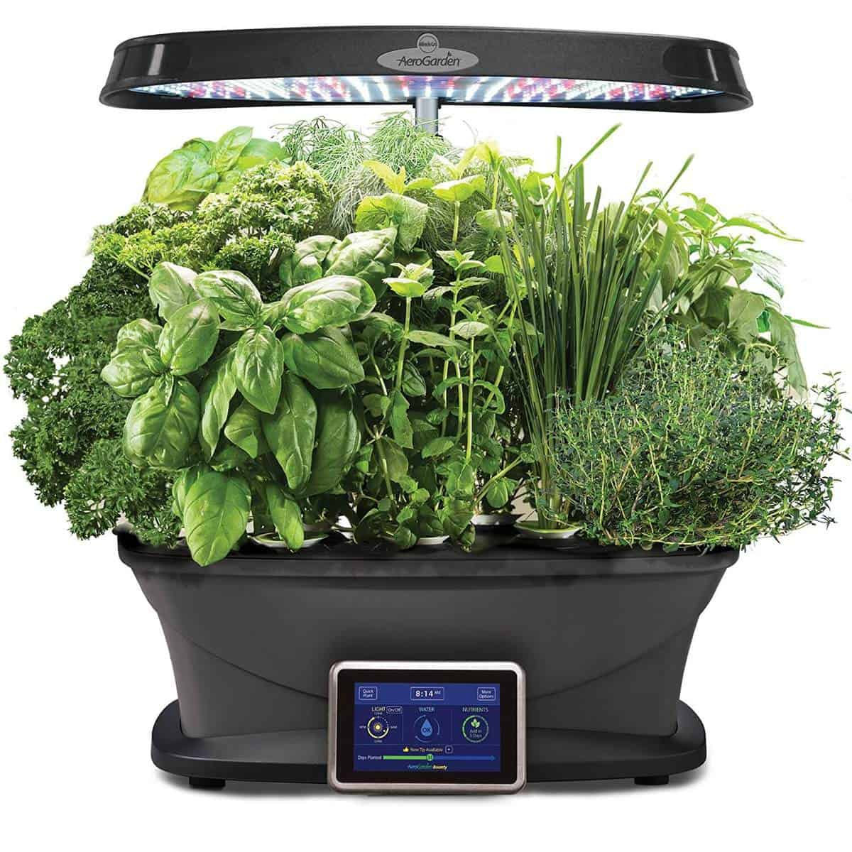 Kitchen Garden Kit: Best Hydroponic Kits For Home Gardeners (2018 Update