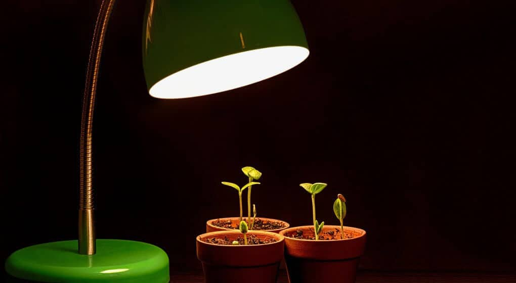 Hydroponic or Aquaponic Grow Lights