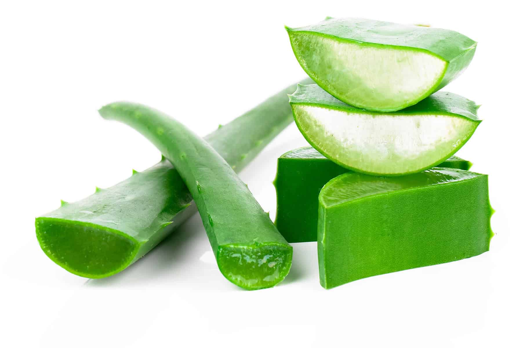 The-Health-Benefits-of-Aloe-Vera.jpg