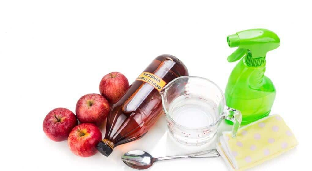 Can Apple Cider Vinegar Remove Bugs, Parasites, and Mold?