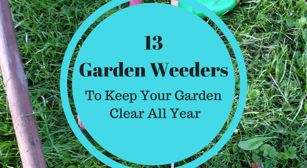 13 Garden Weeders to Keep Your Garden Clear all Year