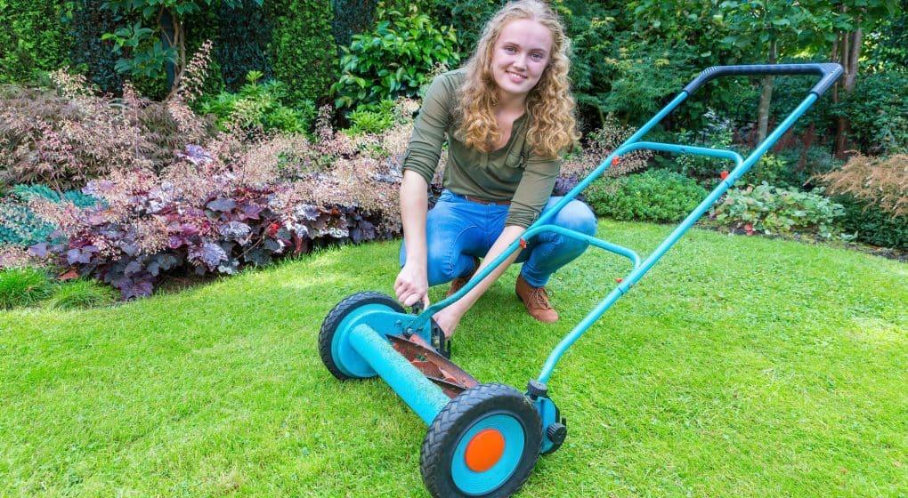 Choosing the Best Reel Lawn Mower