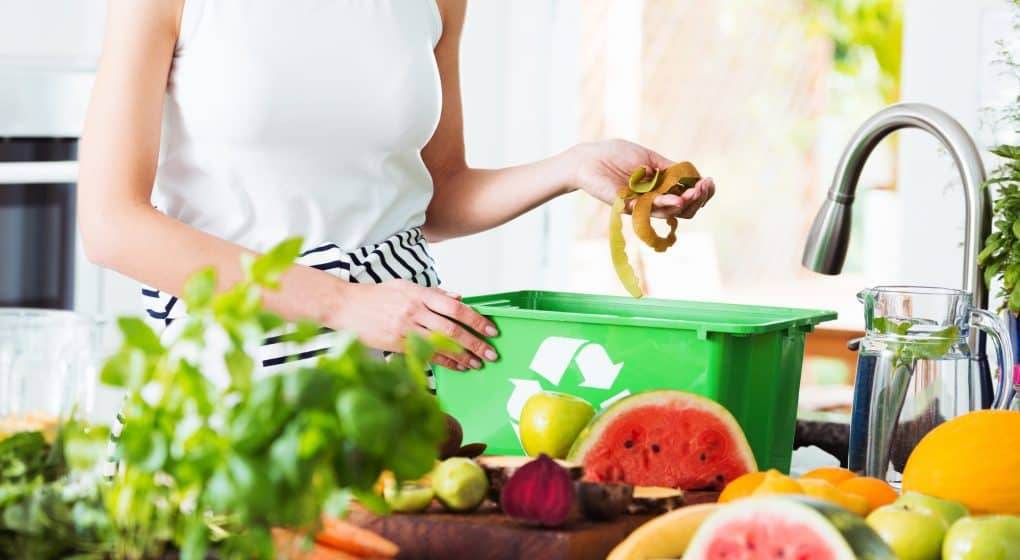 How to Choose the Best Kitchen Composter