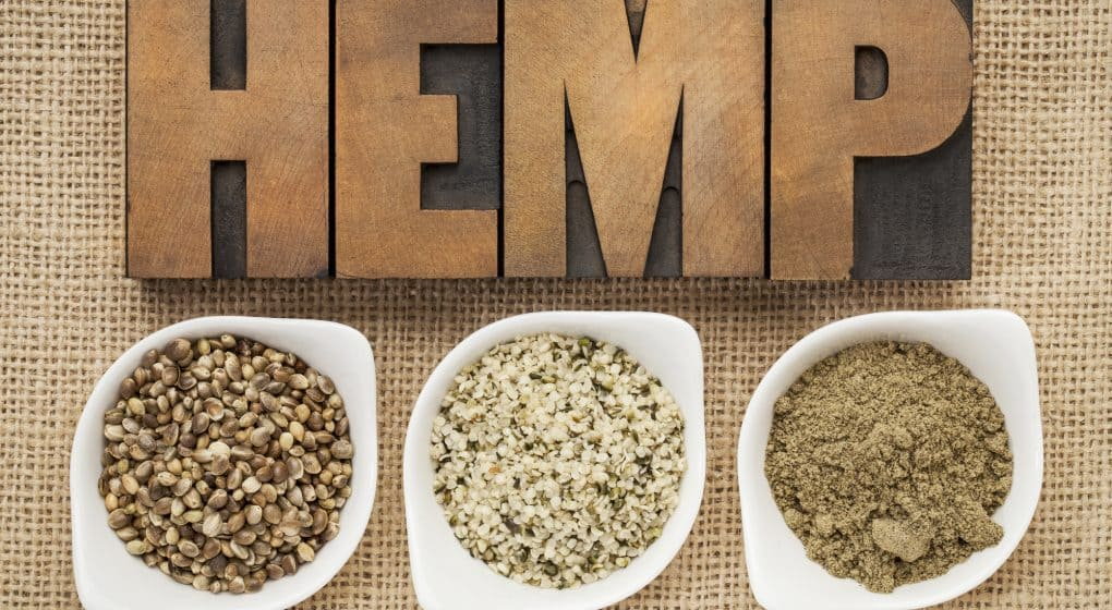 Choosing the Best Hemp Protein Powder