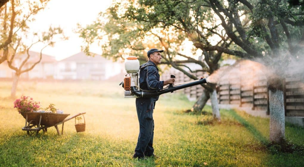 Choosing the Best Backpack Sprayer