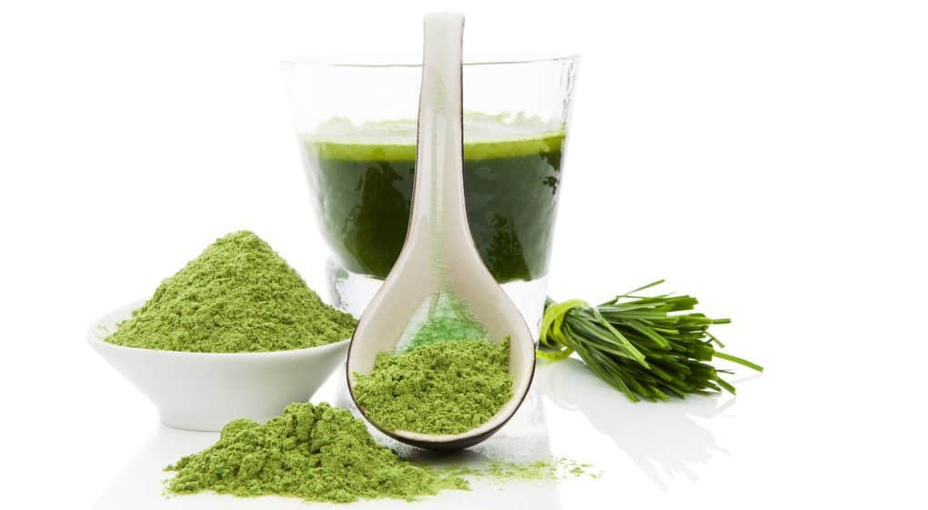 Choosing the Best Spirulina Supplement