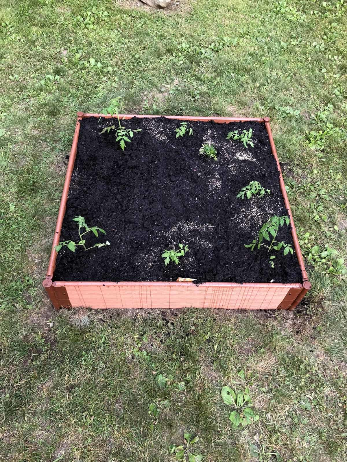 Frame It All Raised Garden Bed