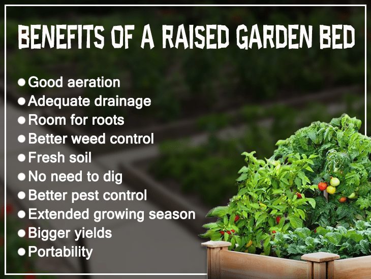 Benefits of a Raised Garden Bed