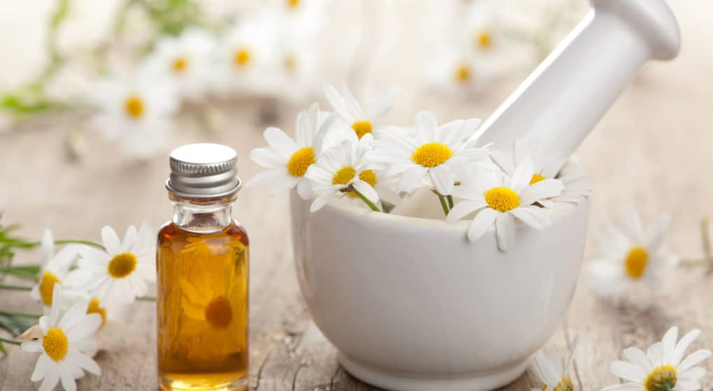 Choosing the Best Chamomile Supplement