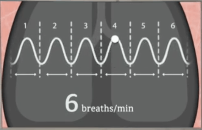 Breaths per minute - baroreflex